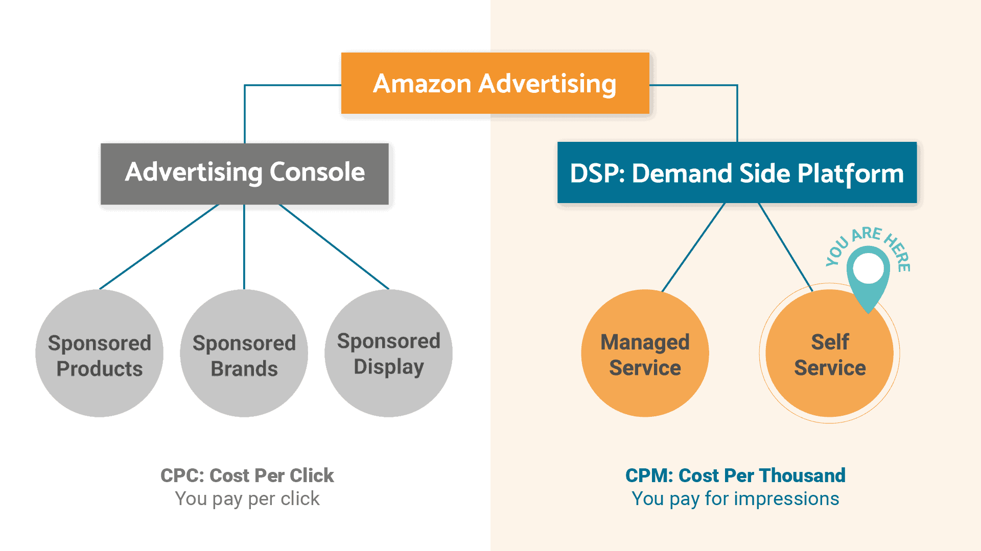 Amazon advertising graph shows where Amazon DSP can help with your ecommerce marketing